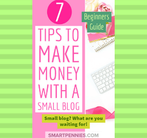 beginners guide 7 tips to making money with a small blog